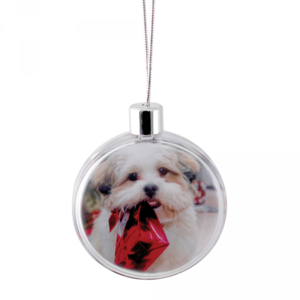Round Ornament - Clear